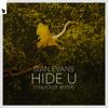 Sian Evans - Hide U (Tinlicker Remix) artwork