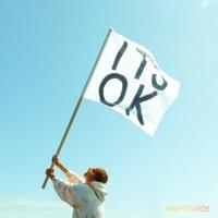 It's Ok - Single
