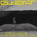 Austria Top 10 Dance Songs - Giant - Calvin Harris, Rag'n'Bone Man