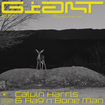 Calvin Harris, Rag'n'Bone Man Giant music video