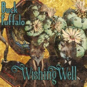 Buck Fuffalo - Wishing Well