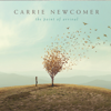 Carrie Newcomer - Learning to Sit with Not Knowing artwork