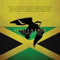 Various Artists - Send I a Lion: A Nighthawk Reggae Joint artwork