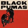 black-pumas-expanded-deluxe-edition