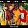 Rak-Su - Palm Trees artwork