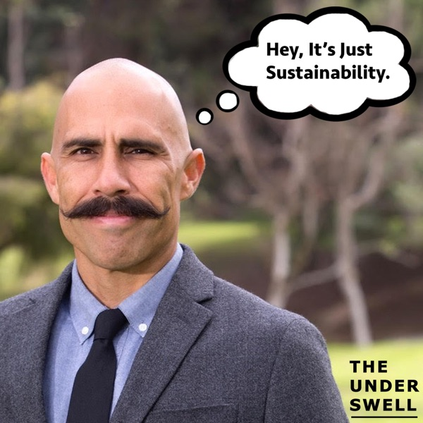 The Underswell Sustainability News Better Business Stories, Solutions & Personalities
