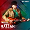 Meethi Meethi Gallan Single