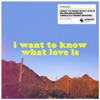 I Want To Know What Love Is BLOND ISH Sunrise Jungle Extended Rework Single