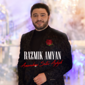 Amenabari Srtov Aghjik - Razmik Amyan