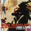 I Know a Place The Remixes Pt 1