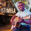 Mduduzi Ncube - Istimela artwork