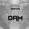 Dam - Brenya