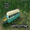 Wild Good Bye - Single