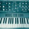 moog-for-love-single