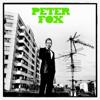 Peter Fox - Stadtaffe (Bonus Track Version) Grafik