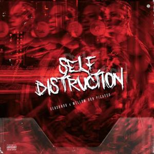 Season98 - Self Distruction feat. Mellow Don Picasso