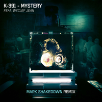 Mystery (Mark Shakedown Remix) - Single