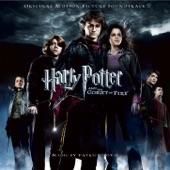 Patrick Doyle - Harry In Winter