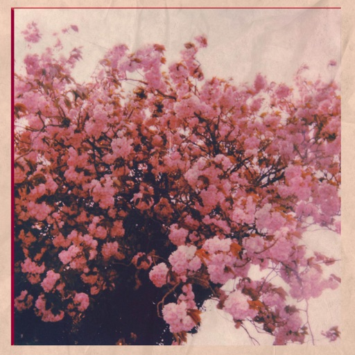 First Day of Spring - Single by vibrant years