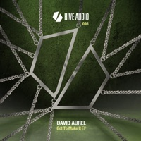 Flying With The Wind - DAVID AUREL