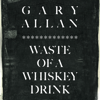 Gary Allan - Wastey of a Whiskey Drink artwork