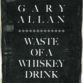 Waste of a Whiskey Drink - Gary Allan