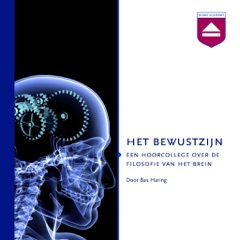 Het Bewustzijn: Een Hoorcollege over De Filosofie Van Het Brein