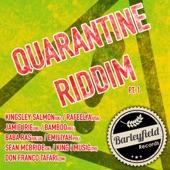 The Big Fish Band - Quarantine Dub