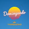 Thiaguinho - Domingando (Ao Vivo)  arte