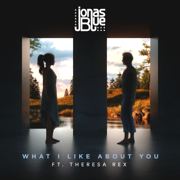 What I like About You (feat. Theresa Rex) - Jonas Blue
