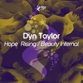 Dyn Taylor - Hope Rising