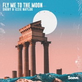 Fly Me to the Moon artwork