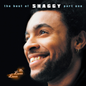 Mr. Lover Lover: The Best of Shaggy, Pt. 1