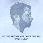 In the Aeroplane over the Sea - Single