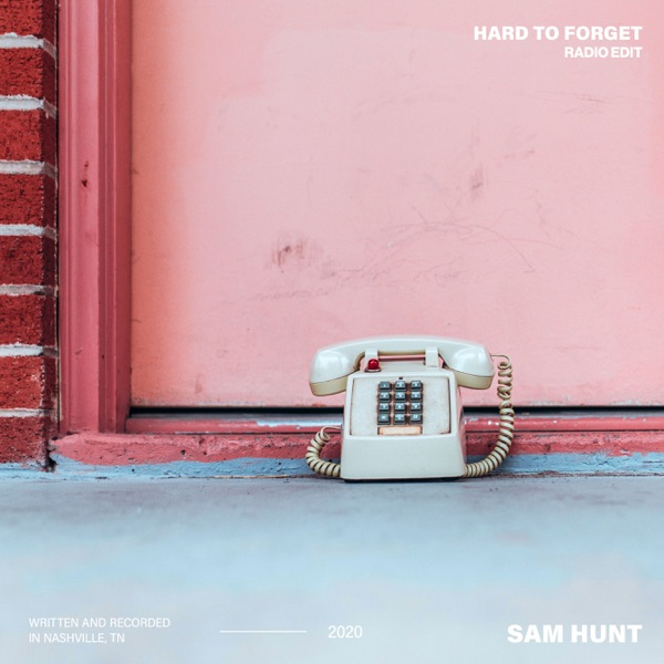Hard to Forget (Radio Edit) - Single