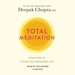 Total Meditation: Practices in Living the Awakened Life (Unabridged)