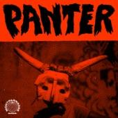 Montparnasse Musique - Panter (Extended) [feat. Kasai Allstars & Basokin]