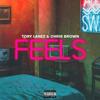 Tory Lanez - Feels (feat. Chris Brown) Grafik
