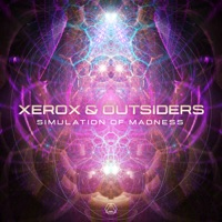 Simulation Of Madness - XEROX-OUTSIDERS
