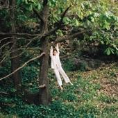 Maple Glider - Swimming