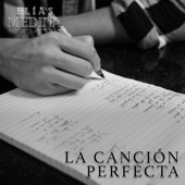 La Canción Perfecta