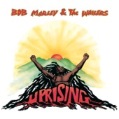 Bob Marley - Coming In From The Cold (Album Version)