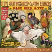 Steve Martin - Hide Behind A Rock