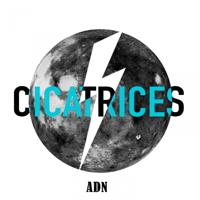 lagu mp3 ADN - Cicatrices