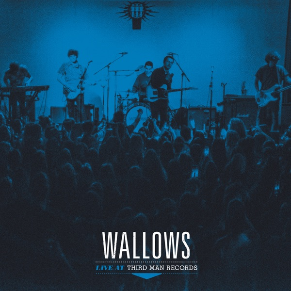 Wallows: Live at Third Man Records
