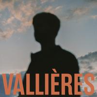 Vincent Vallières - Toute beauté n'est pas perdue artwork