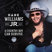 Hank Williams, Jr. - Outlaw Women