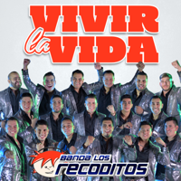 Banda Los Recoditos - Vivir La Vida artwork