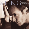 Sting - I'm So Happy I Can't Stop Crying bild