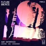 Sam Interface - Going In